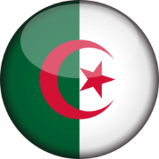 flag-3d-round-2501