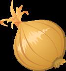 food-onion